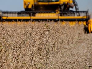 PALMEIRA DAS MISSÕES, RS, BRASIL, 18.04.13: Colheita de soja na Região Celeiro. Foto: Camila Domingues/Palácio Piratini