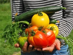 vegetables-742095_640