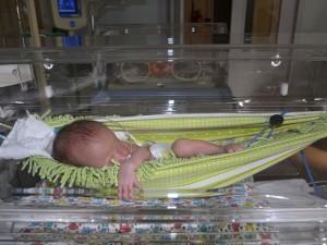 Bebês prematuros ficam no embalo das redinhas na UTI  Neonatal (1)