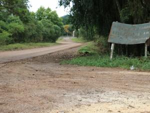 transbrasiliana (10)