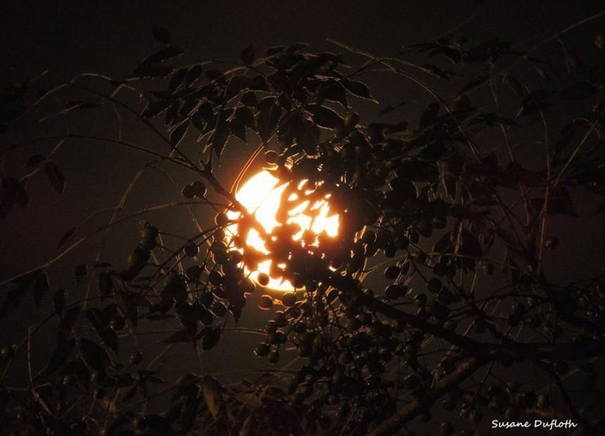 super lua (3)