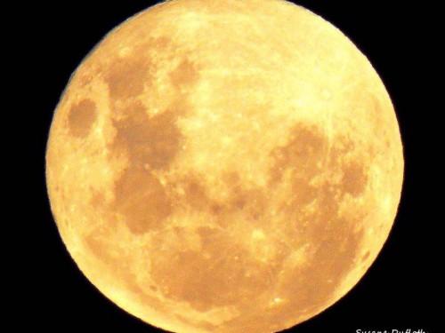 super lua (4)