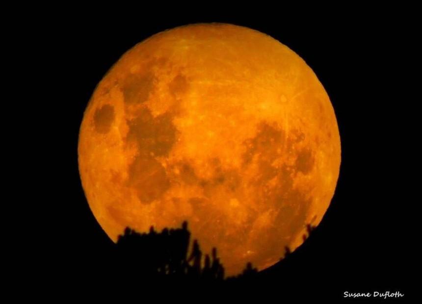 super lua (6)