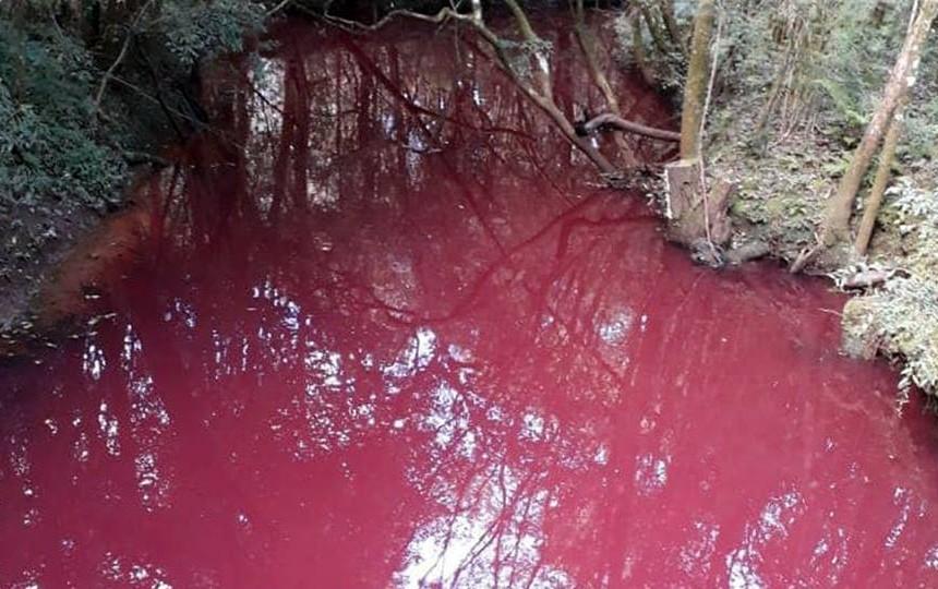 rio paulog etulio 1