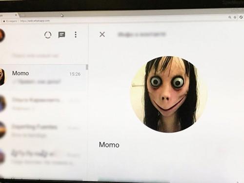 momo whatsapp