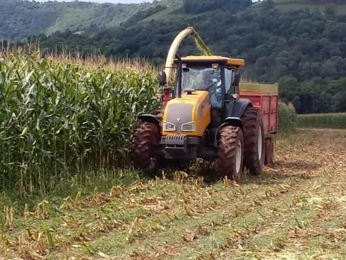Agricultores recebem auxílio na produção de silagem em Charrua