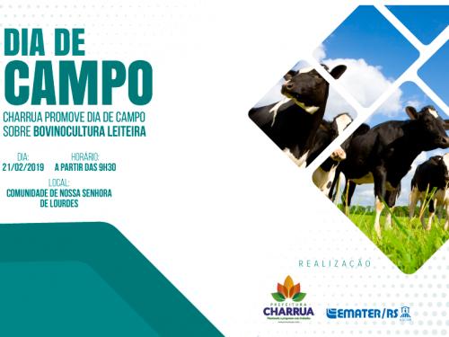 Charrua promove Dia de Campo sobre bovinocultura leiteira