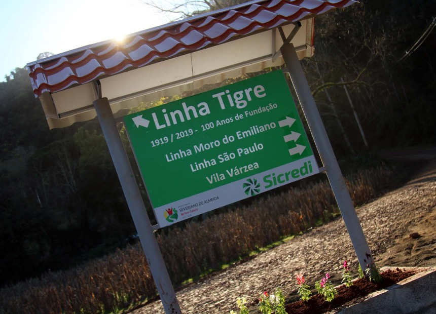linhatigre3