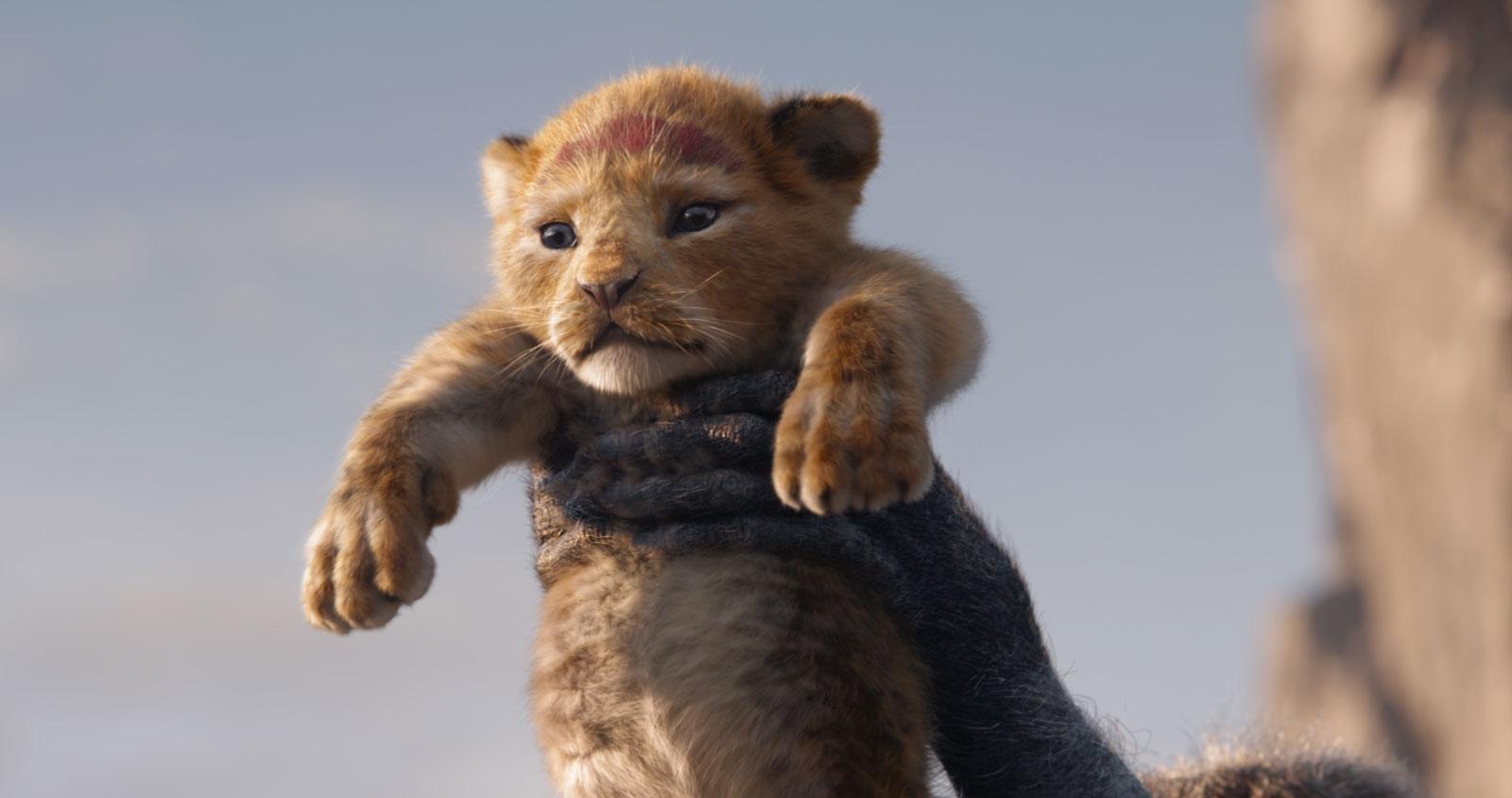 O Rei Leão (20)