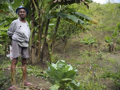 Ilha da Marambaia (RJ) - Dona Tacira Julião Alves, remanescente quilombola, mostra o que cultiva em sua roça (Tânia Rêgo/Agência Brasil)