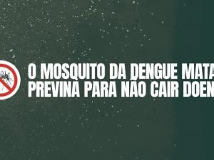 mosquito da dengue prevencao