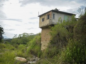 Em 12 de janeiro de 2011, o bairro Campo Grande foi arrasado por chuvas que deixaram um rastro de destruição.Cinco anos depois, a vegetação esconde o que restou de antigas casas.